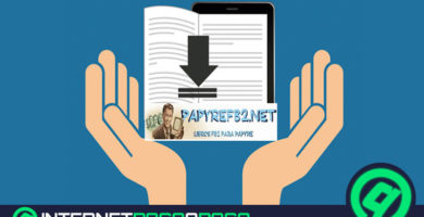 Papyre FB2 ferme Quels sites Web alternatifs pour télécharger des livres électroniques sont encore ouverts? Liste 2020