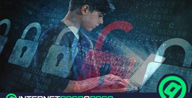 Quels sont les navigateurs les plus sûrs pour surfer sur Internet en toute sécurité? Liste 2020
