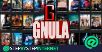 GNULA.nu closes What alternative websites are there to watch free movies and series online? 2020 list