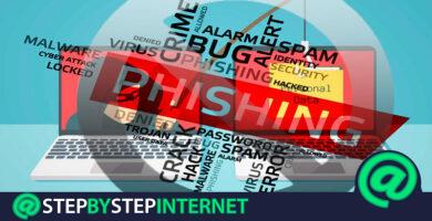 How to avoid phishing and avoid suffering a phishing attack? Step by step guide
