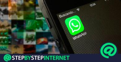 How to change the WhatsApp Messenger wallpaper on Android and iOS? Step by step guide