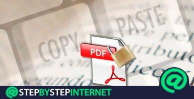 How to copy the text of a PDF file even if it is protected? Step by step guide