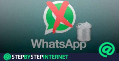 How to delete my Whatsapp Messenger account? Step by step guide