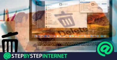 How to delete the cookies stored in any browser in MacOS? Step by step guide