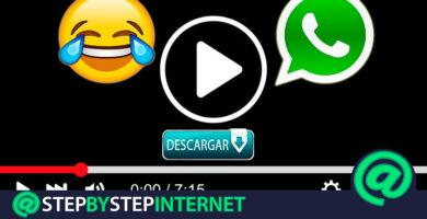 How to download funny videos for WhatsApp and entertain your contacts? Step by step guide