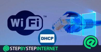 How to enable DHCP in Windows to have Internet via Ethernet or Wifi? Step by step guide