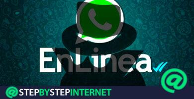 """How to hide the """"online"""" status on WhatsApp and not appear connected on Android and iOS? Step by step guide"""