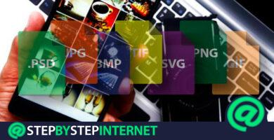 How to join several photos in a single image for free and online? Step by step guide