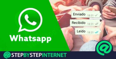 How to know at what time and who has read my messages in WhatsApp Messenger groups? Step by step guide