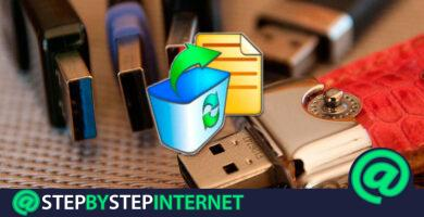 How to recover deleted data and files from a USB or USB flash drive? Step by step guide