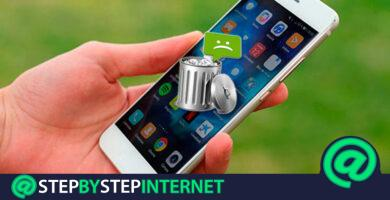 How to recover deleted text or SMS messages on your Android phone or iPhone? Step by step guide