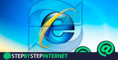 How to update the Microsoft Internet Explorer browser to the latest version? Step by step guide