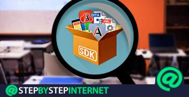 SDK What is the Software Development Kit and what are its best tools?