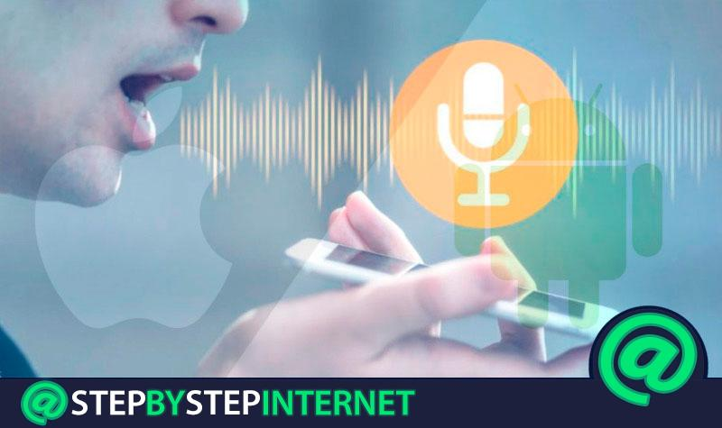 What are the best applications to change the voice on Android and iOS mobiles? 2020 list