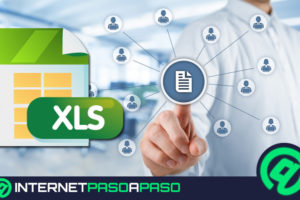 .XLS file extension What are and how to open such files?