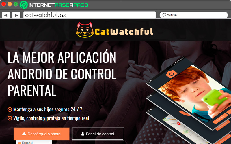 Catwatchful homepage